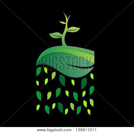 leaf combine with seed for ecology and rain leaf  logo illustration
