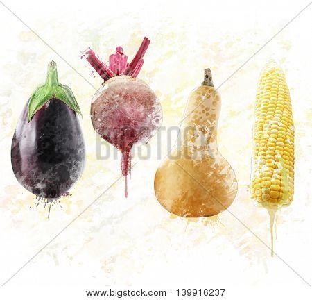 Digital painting of fresh eggplant,beet,squash and sweet corn