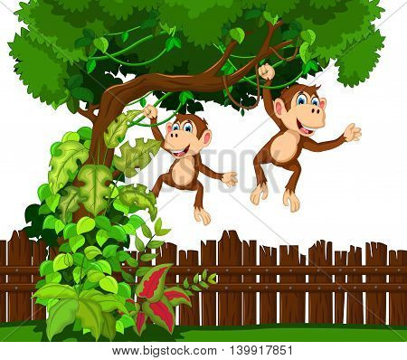 happy two monkey cartoon hinging in the tree