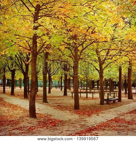 Autumn season Luxembourg Gardens in Paris France
