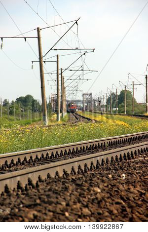 Railway track. Perspective view. Summer day. Landscape with green grass and yellow flower