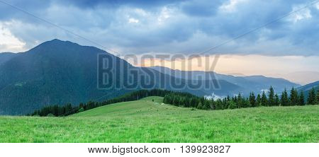 Sunset in the mountains. Summer landscape with fir forest and mountain peaks. Carpathians, Ukraine, Europe. Art processing of photos. Color toning