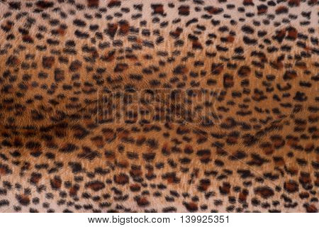 Leopard skin texture for background. Leopard skin texture for background.