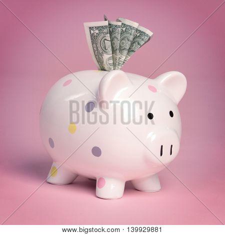 Pink piggy bank holding money