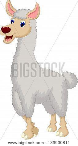cute lama cartoon smiling for you design