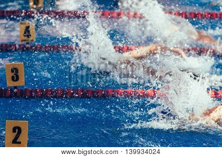 Swimming competition, color image, horizontal image, freesytle