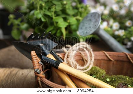 Gardening tools and flowers closeup