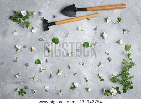 Gardening tools and flowers on grey textured background
