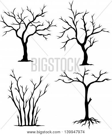 collection of dead trees for you design