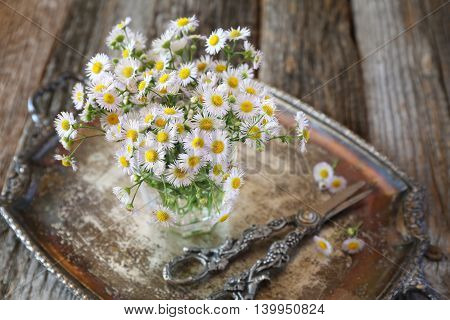 Bouquet of field daisies on vintage tray
