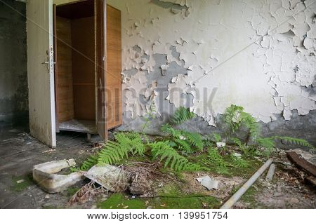 desolate room with wardrobe and overgrown floor in abandoned Pripyat. Chernobyl zone