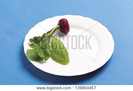 Red radish On the plate