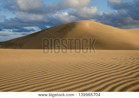 Dunes and lines with shadows on Rubjerg Knude Denmark