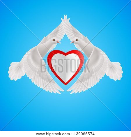 White doves form of the wings of the heart