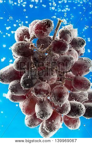 Fresh grapes surrounded by water bubbles on the blue background
