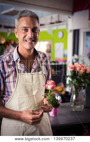 Portrait of male florist holding rose at his flower shop