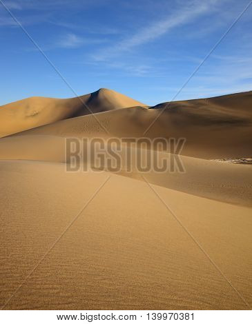 Hot and windy morning in the desert. The soft curves of yellow sand dunes. Mesquite Flat Sand Dunes