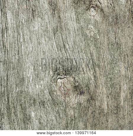 Old wood texture. Abstract background . old wall