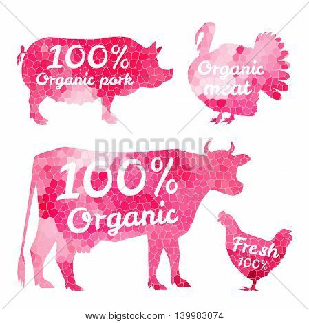 Set of farm animals for markets butchers and restaurants