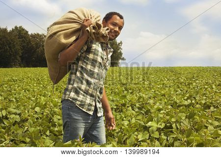 Brazilian coffee farmer at coffee plantation carrying a sack with beans