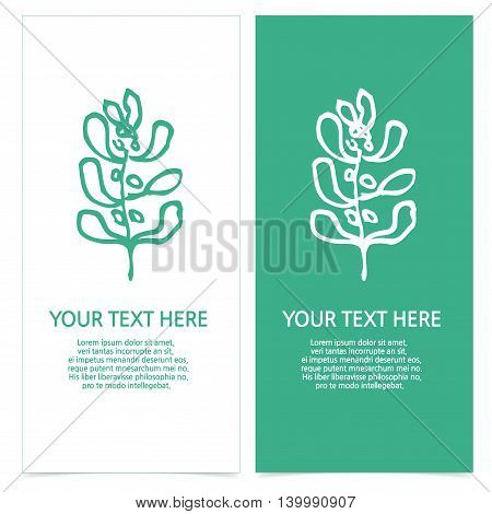 set of brochures with abstract plants images