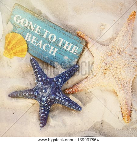 Summer Sand Seashells Sign Concept