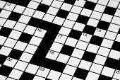 picture of dyslexia  - Detail of part of a blank crossword puzzle - JPG