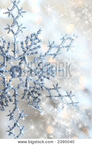 Closeup Of Snowflake