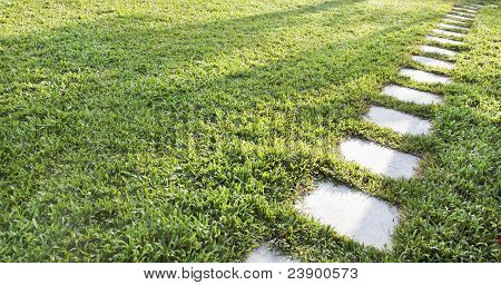 Diagonal Stepping Stones Accross A Lush Green Lawn