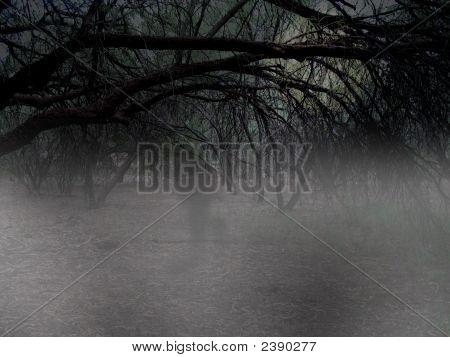 Spooky Woods Scene