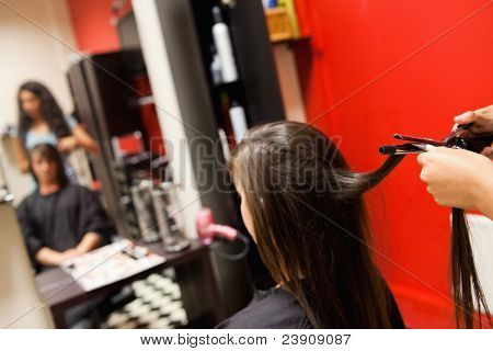 Cute woman having her hair straightened by an hairdresser