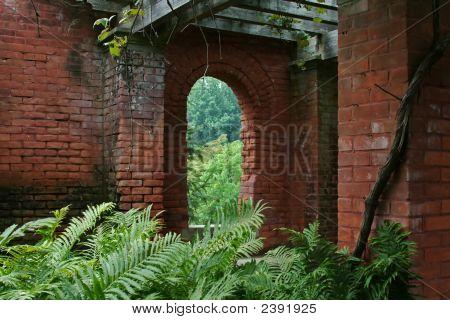 Brick Window And Ferns