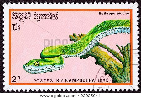 Canceled Cambodian Postage Stamp Green Snake Guatemalan Palm-pitviper, Bothrops Bicolor