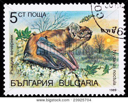 Canceled Bulgarian Postage Stamp Common Noctule Bat Nyctalus Noctula Sunset
