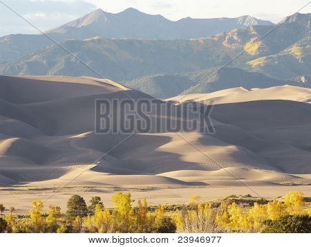 Mountain Dunes