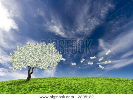 Dollar Cash Tree