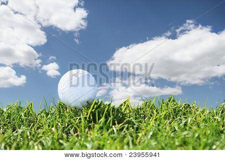 Close-Up de golfe