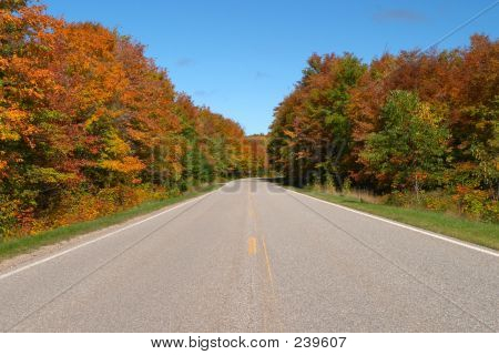 Highway With Fall Colors