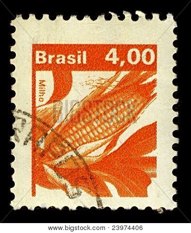 BRAZIL-CIRCA 1980:A stamp printed in Brazil shows image of Maize known in many English-speaking countries as corn or mielie/mealie, circa 1980.