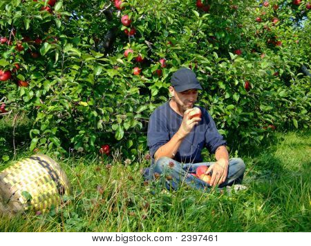 Young Man Eating An Apple