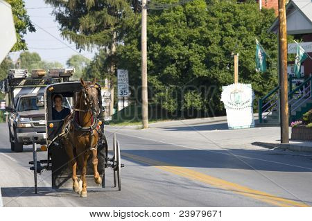 Amish Girl On The Road