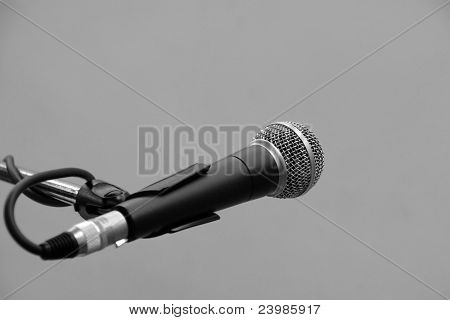 Microphone On The Stand