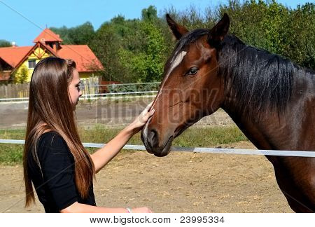 girl caressing a horse at a horse farm