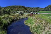 picture of brook trout  - Trout stream running past a farm near Coon Valley - JPG