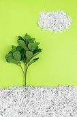 Green Tree Growing In Recycled Shredded Paper, On Bright Green Background. Environment Protection An poster