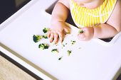 Babys First Food To Feed poster