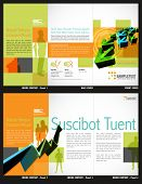 pic of brochure design  - Tri - JPG