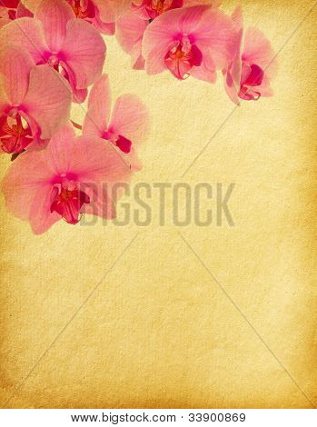 floral background with space for text or image.