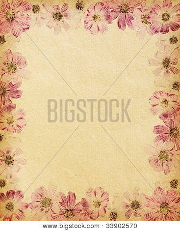 vintage  paper textures with  floral frame. cosmea