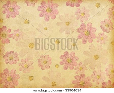 old paper background with cosmea flowers